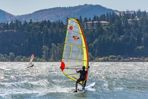 office_windsurfer